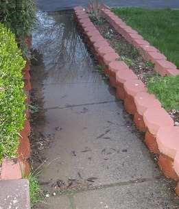 Water affects Concrete in St. Louis and Kansas City
