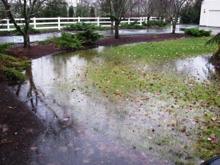 poor yard drainage, surface water, poor yard drainage MO